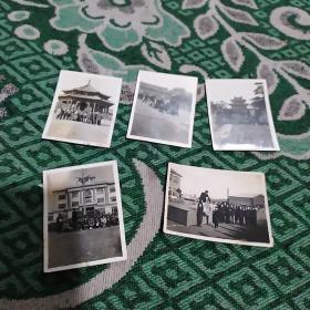 六、七十年代青年合影照5张合售