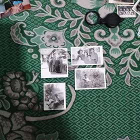 家庭照片4张合售