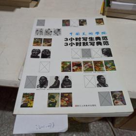 中国美术学院三小时写生典范三小时默写典范