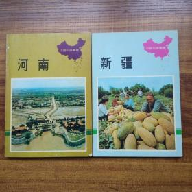中国知识丛书《 新疆》《河南》两册    中华书局     初版