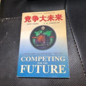 竞争大未来:企业发展战略
