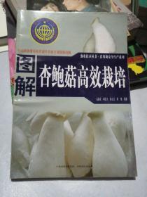 图解杏鲍菇高效栽培