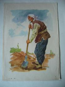 水粉画:老 农(印刷品)16开