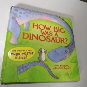 How Big Was a Dinosaur? Usborne英文原版