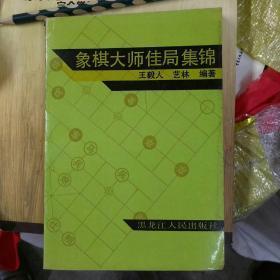 象棋大师佳局集锦(32开)