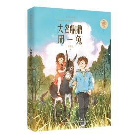 大名鼎鼎周一兔/金色时光系列