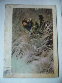 油画:英雄的姊妹们 (纸制品) 16开 背面是杨竹西像