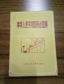 中华人民共和国刑法图解(附关于严惩严重破坏经济的罪犯的决定)
