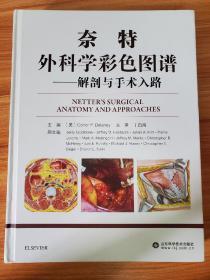 奈特外科学彩色图谱——解剖与手术入路