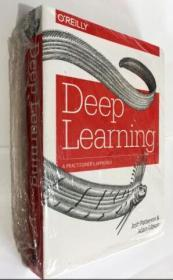 Deep Learning:A Practitioners Approach  深度学习:从业者的方法