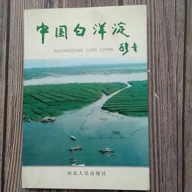 中国白洋淀