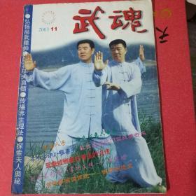 武魂杂志2003-11