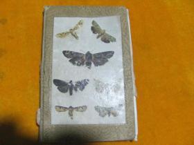 分类原色日本昆虫图鉴