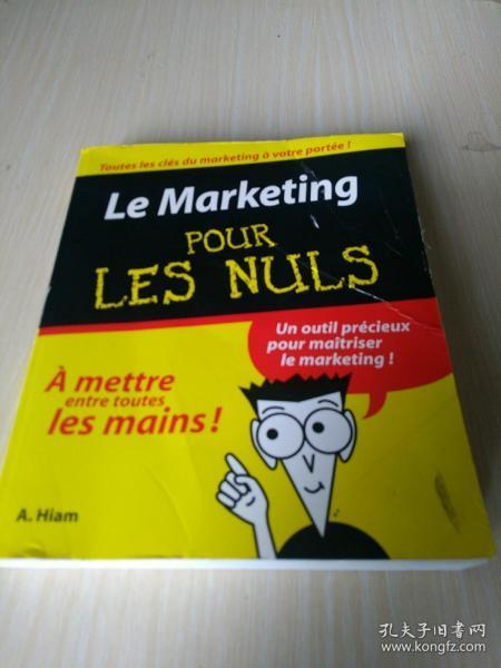 pour les nuls  le marketing