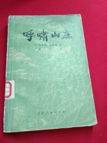呼啸山庄 馆藏书