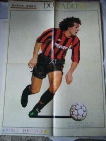 体育宣传图片:意大利足球名将多纳多尼 4开