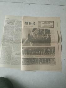 榆林报1976年10月30日8版全