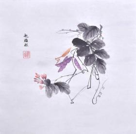 花虫 赵雄根10款,螳螂 蝴蝶 蝉 ------老师手绘多款,部分与图片有偏差