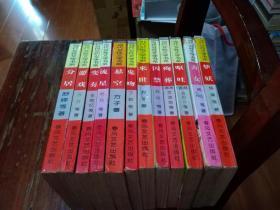 当代女性文学书系(一套12本全):游戏、鬼吻、悬空、来世、殉葬、囚禁、梦妖、呕吐、斋女、流星、分居、变奏等12本合售