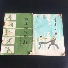 正版现货 青年长拳和武术初级套路 两本合售 赠送一本散手拳法(缺底封,内完好)