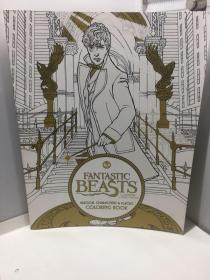 Fantastic Beasts and Where to Find Them  Magical