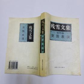残雪文集 第四卷:突围表演