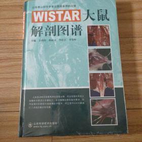 WISTAR大鼠解剖图谱