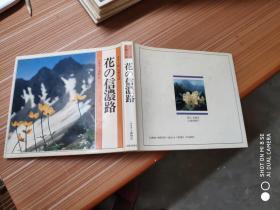 花の信浓路(精装)日文书