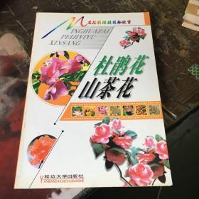 名花栽培技藝與欣賞 (杜鵑花 山茶花).