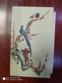 50年代辽宁画报出版社 美术贺卡 张其翼作
