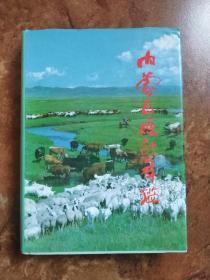 内蒙古统计年鉴 1991