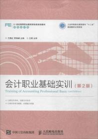 会计职业基础实训(第2版)
