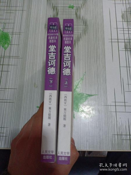 堂吉诃德(上下)