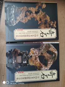 中国艺术品收藏鉴赏全集:奇石 上下卷