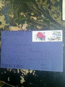 信封----联合成立五十周年