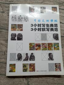 中国美术学院3小时写生典范3小时默写典范