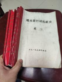 《醴南丽村胡氏家史》卷一   卷二上   卷二下   卷三    共四册一套全   16开