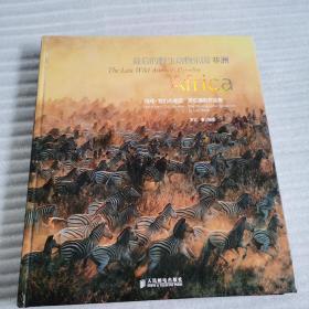 最后的野生动物乐园——非洲