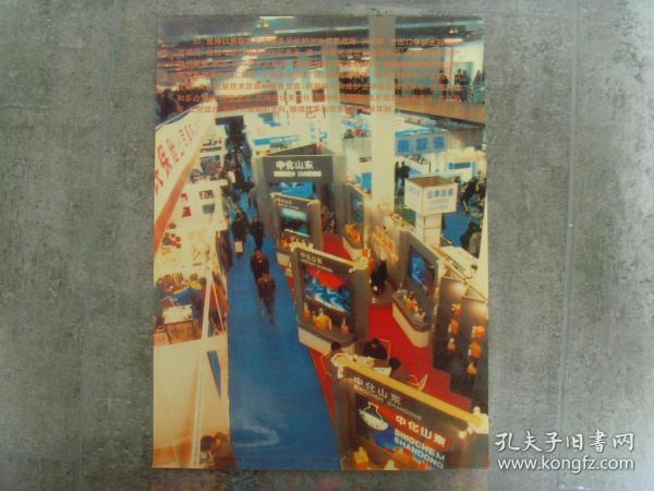 超大尺寸:2000年,中化山东展厅