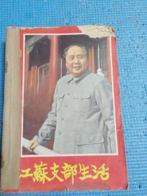 江苏支部生活   1965年5、6、7、8、9、10、11、12、13、14、15、16期