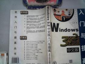 Windows 3.2入門與提高中文版