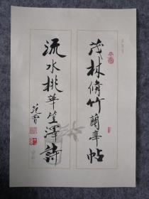 范曾书法 软片 信札 手札 诗札 书信 专用诗札纸