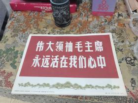 伟大领袖毛主席永远活在我心中 新闻展览照片农村普及版 63+1=64张全8开