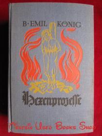 Ausgeburten des Menschenwahns im Spiegel der Hexenprozesse und der Autodafés(德语原版 精装本)在巫师审判和自我牺牲的镜子中耗尽人类的疯狂