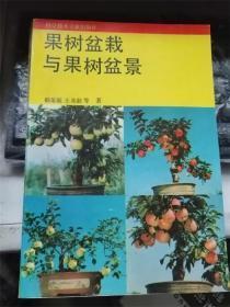 果树盆栽与果树盆景
