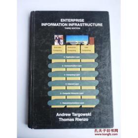 现货【全国运费6元起】Enterprise Information Infrastructure,