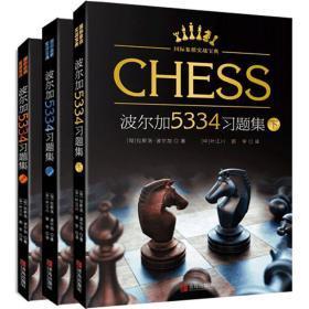 【正版】 波尔加5334习题集(上 中 下全3册)国际象棋经典习题