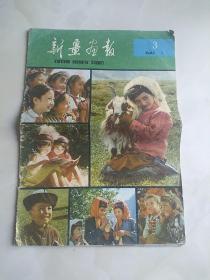 新疆画报1982年3期