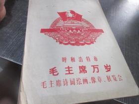 呼和浩特市,毛主席万岁,毛主席诗词绘画,像章,展览会  库2