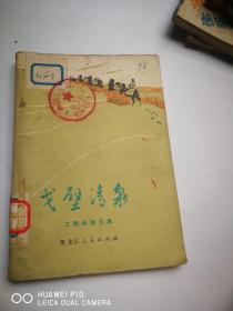 戈壁清泉:工程兵散文集